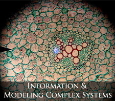 information and modeling complex systems